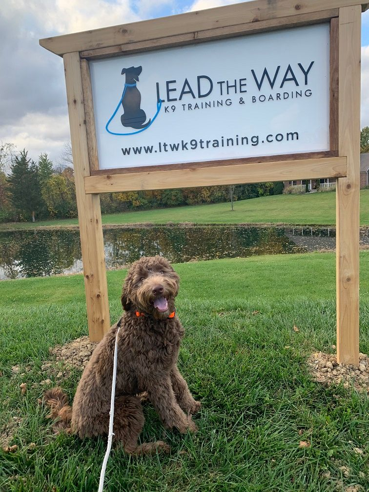 Lead the Way Training Sign